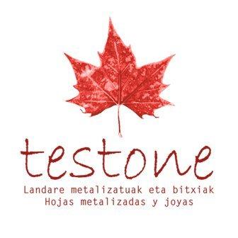 Logotipo Testone