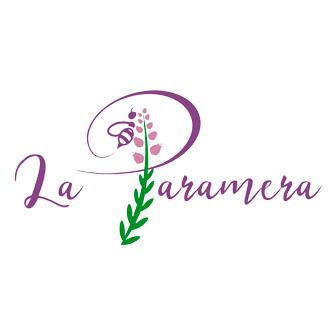 Logo paramera